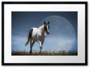 Lunar–Horse_redbubble_Framed_Print_black_bright_white_box
