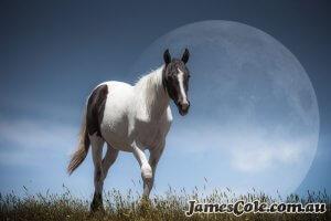 Lunar Horse - Fantasy Artwork by James Cole